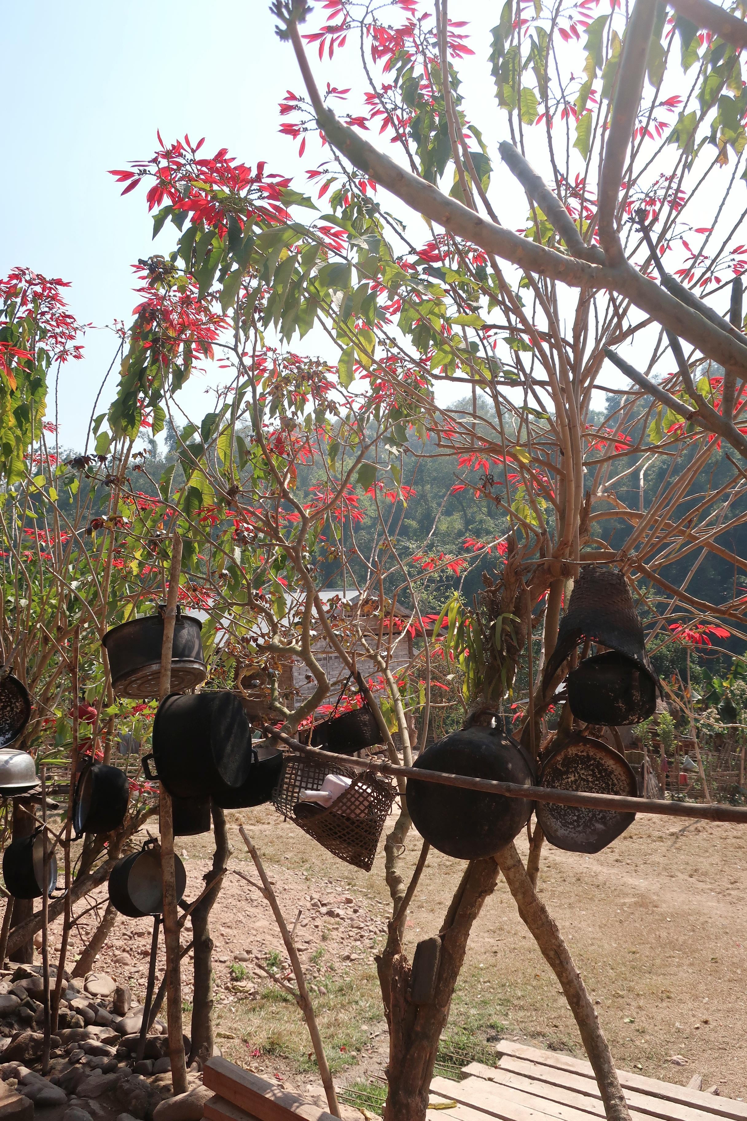 Trek nord du laos